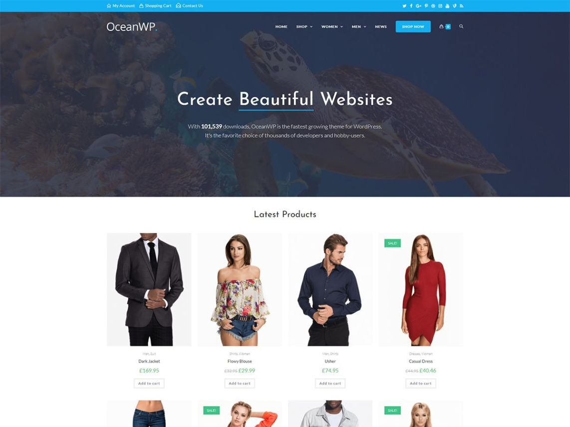 OceanWP free WordPress theme